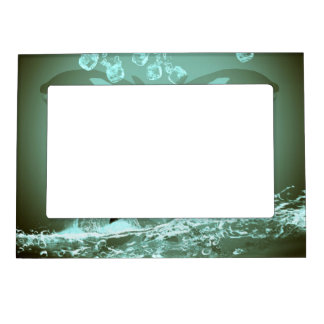 Orca asombrosa marcos magneticos de fotos