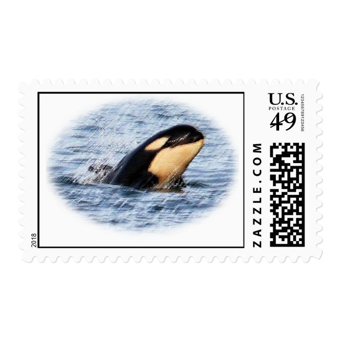 Orca Baby Pastel Postage