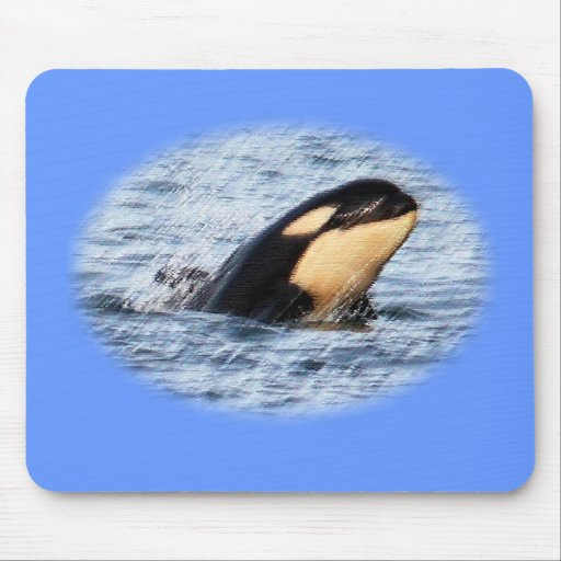 Orca Baby Spy Hop In Pastel Mouse Pad