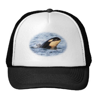 Orca Baby Spy Hop In Pastel Trucker Hat