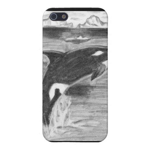 Orca blanco y negro iPhone 5 cobertura