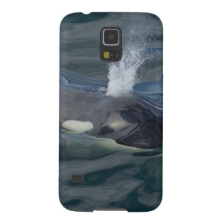 Orca blowing galaxy s5 cover