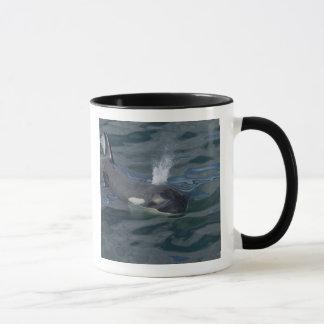 Orca blowing mug