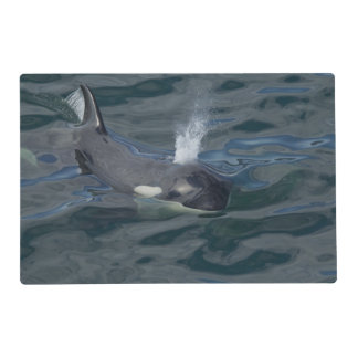 Orca blowing laminated place mat