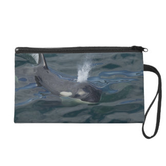 Orca blowing wristlet purse
