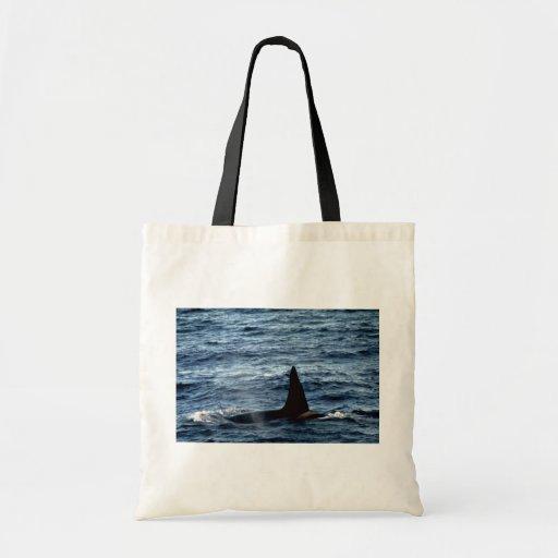 Orca Bolsa