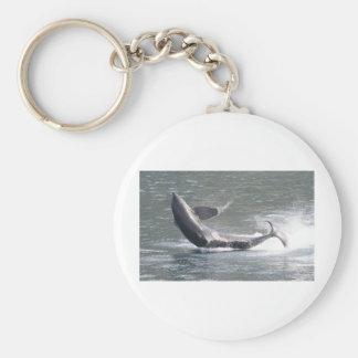 Orca breaching in Alaska Keychain