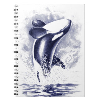 Orca Breaching Notebook