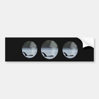 Orca Breath: BIG Bumper Sticker