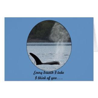 Orca Breath: BIG Card
