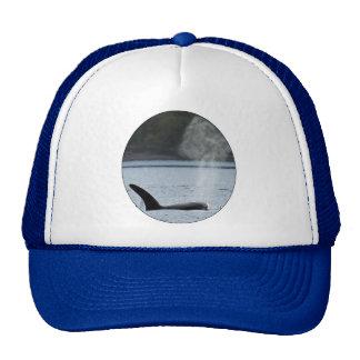 Orca Breath: BIG Trucker Hat
