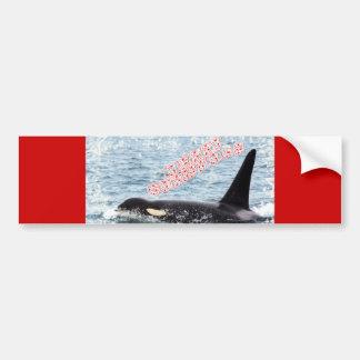 Orca Christmas Winter Wonderland Holiday Bumper Sticker
