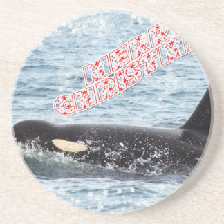 Orca Christmas Winter Wonderland Holiday Drink Coasters