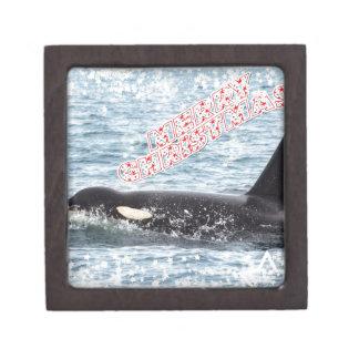 Orca Christmas Winter Wonderland Holiday Premium Trinket Boxes