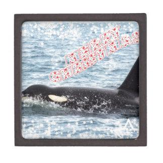 Orca Christmas Winter Wonderland Holiday Premium Jewelry Boxes