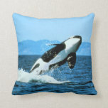 Orca Cojin