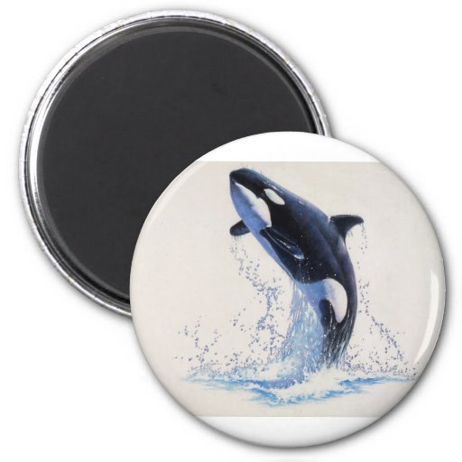 Orca Dance Magnet