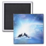 Orca Dance Square Magnet