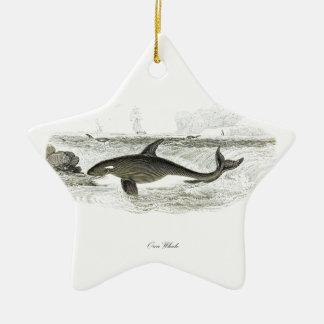 Orca de la ballena #13 de la orca adorno navideño de cerámica en forma de estrella