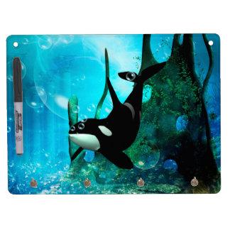 Orca de la natación pizarras blancas de calidad