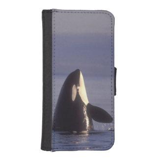 Orca de la orca de Spyhopping (orcinus de la orca) Billetera Para Teléfono
