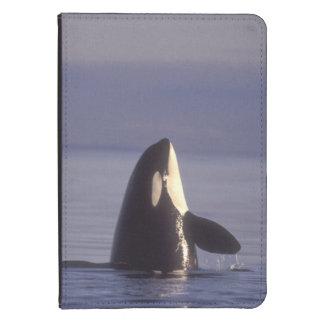 Orca de la orca de Spyhopping (orcinus de la orca) Funda Para Kindle 4