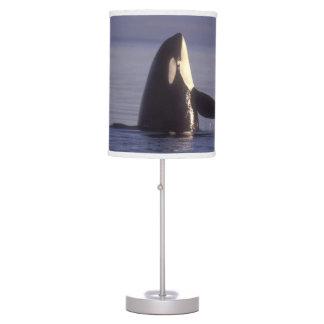 Orca de la orca de Spyhopping (orcinus de la orca) Lámpara De Mesilla De Noche