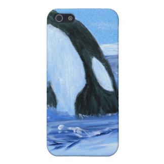 Orca de la orca iPhone 5 protectores