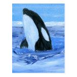 Orca de la orca postal