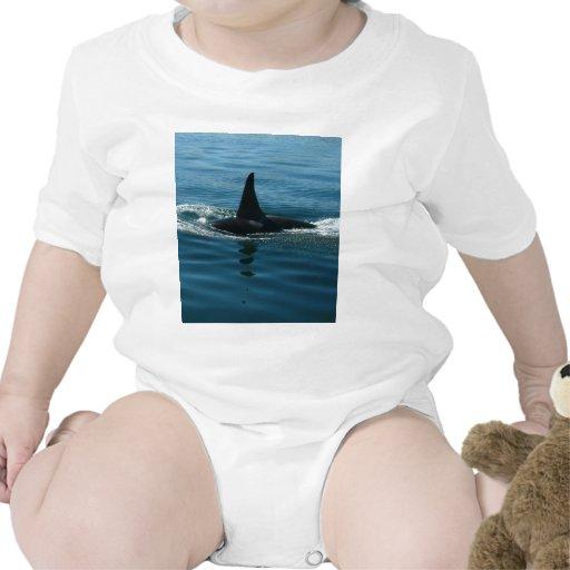 Orca de la orca traje de bebé