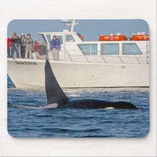 Orca de la orca - transeúnte, Washington Alfombrilla De Raton