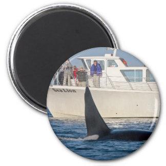Orca de la orca - transeúnte, Washington Imán Redondo 5 Cm