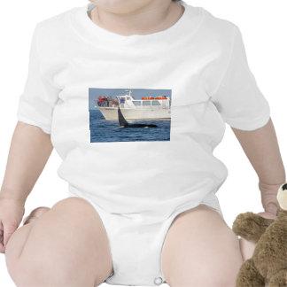 Orca de la orca - transeúnte, Washington Traje De Bebé