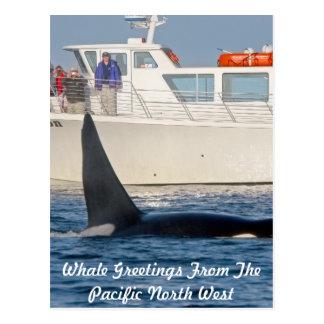 Orca de la orca - transeúnte, Washington Postal
