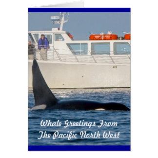 Orca de la orca - transeúnte, Washington Tarjeta De Felicitación