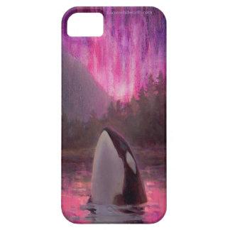 Orca de la orca y aurora boreal rosada/magenta iPhone 5 fundas