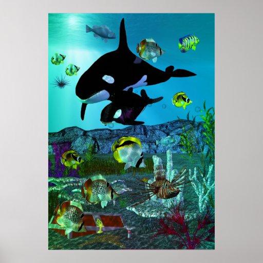 ORCA del acuario de la exploración 3D Posters
