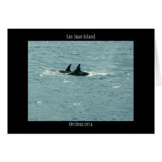 Orca del Orcinus Tarjeta De Felicitación