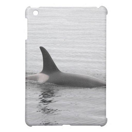 Orca del salto