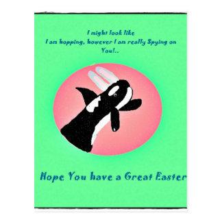 Orca divertida con la postal de los oídos del