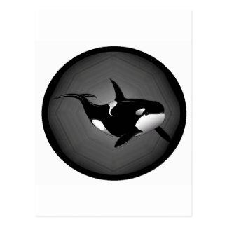 ORCA EN LA NOCHE POSTAL