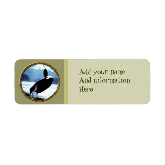 Orca Etiquetas De Remite