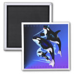 Orca Family Magnets