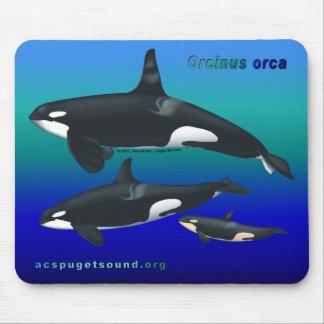 Orca Family Mousepad on Ocean Blues bkg