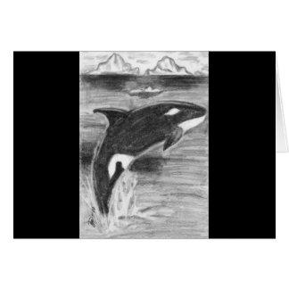 Orca Freedom Card