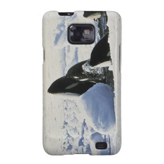 orca samsung galaxy s2 carcasas