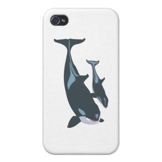 Orca iPhone 4 Coberturas