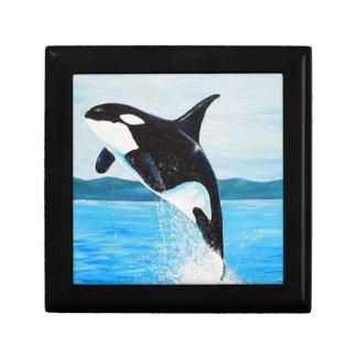 Orca Gift Box