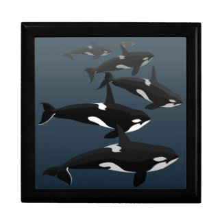 Orca Gift Box Personalize Killer Whale Jewelry Box