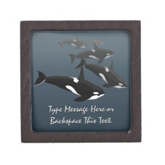 Orca Gift Box Personalize Killer Whale Jewelry Box Premium Gift Boxes